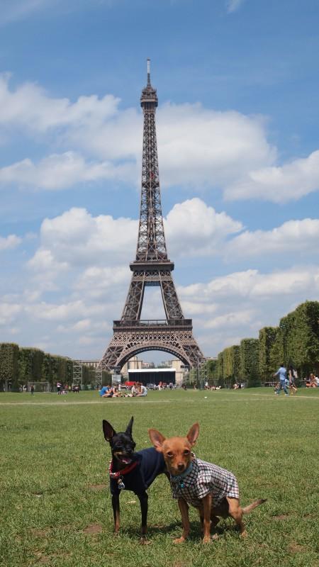 Париж 2012 год