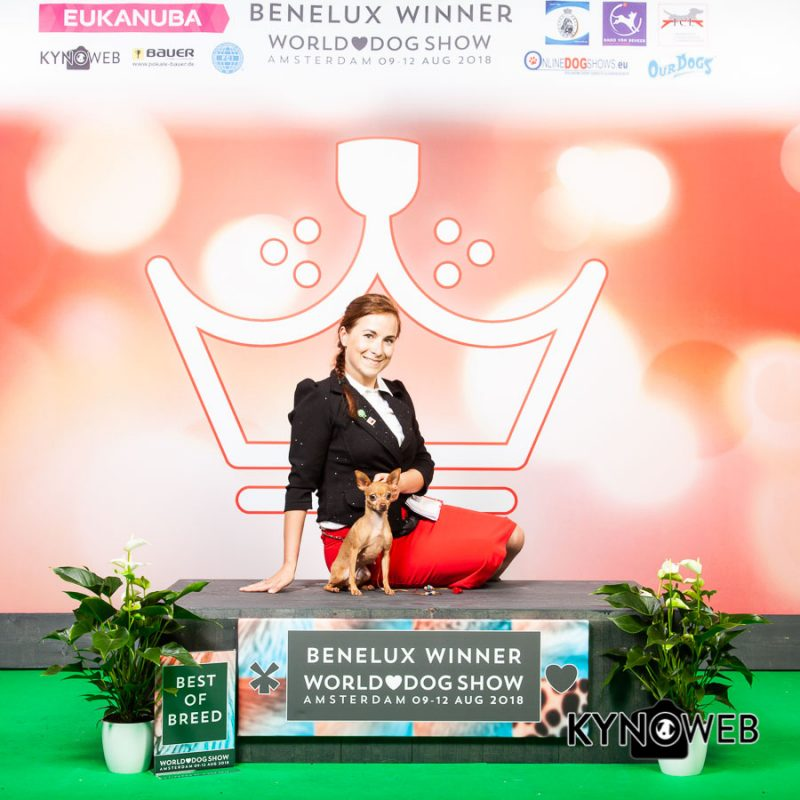 Benilux Winner 2018